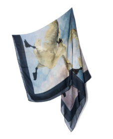 Silk Scarf Threatened Swan