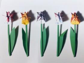 hollandse tulpen vouwbloemen