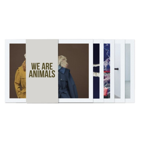 Set of postcards - We Are Animals