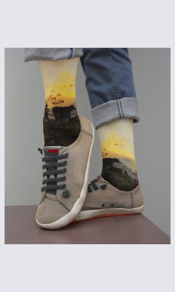 Socks Aelbert Cuyp