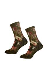 Jacob Gerritsz. Cuyp - Tulip Socks